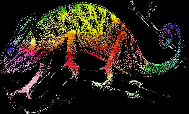 lizard-1503558_640